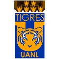 tigres 128